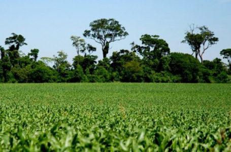Meio Ambiente e Agricultura participa de evento sobre Inventário de Emissões de Gases de Efeito Estufa