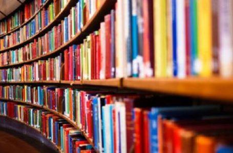 """""""Leituras elásticas"""" são novo conceito para formar leitores"""