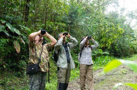 Turismo de conservação promove melhorias ambientais e socioeconômicas