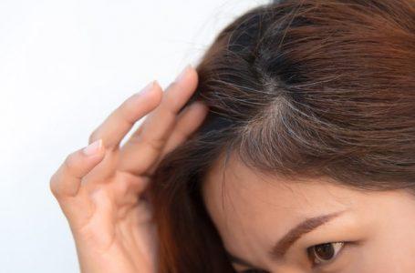 O que acontece quando cabelos bancos são arrancados? Mais fios nascem no lugar?