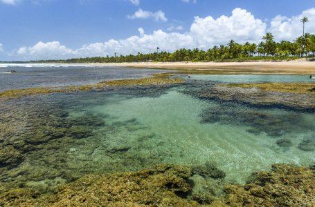 Bahia é o Estado mais buscado para turismo em 2019, de acordo com um levantamento do Hurb – Hotel Urbano